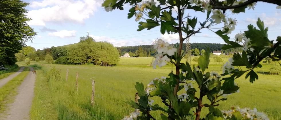 Blick aus dem Tal auf die Küstille
