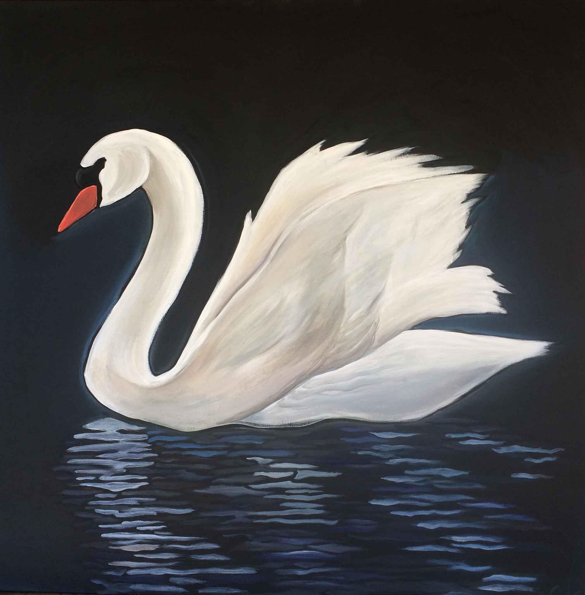 Swan 36x36