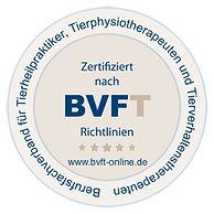 BVFT_logo.png