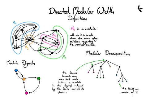 Parameterized Algorithms for Directed Modular Width