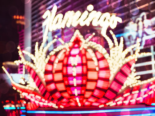 Flamingo Casino Las Vegas