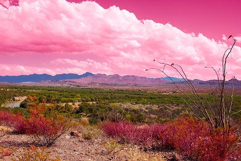 Big Bend Pink Landscape I