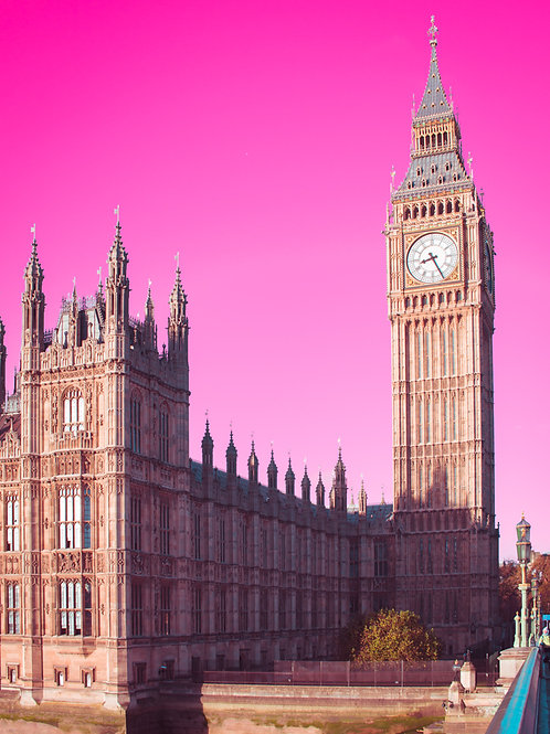 Parliament Pink