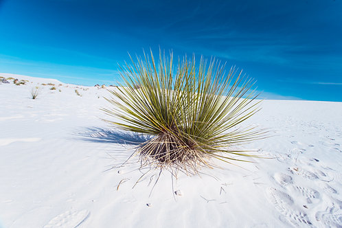 White Sands New Mexico Hills