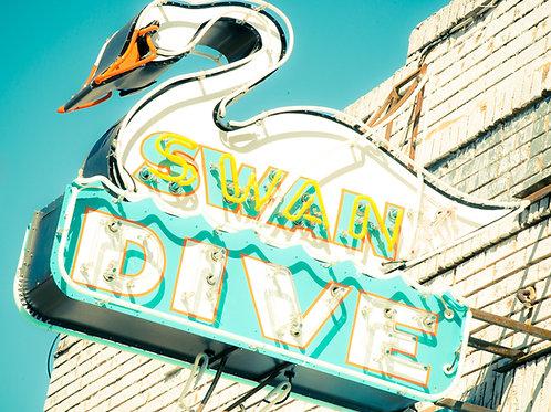 Swan Dive Soft