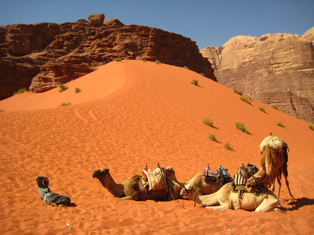 Red dune in Wadi Rum