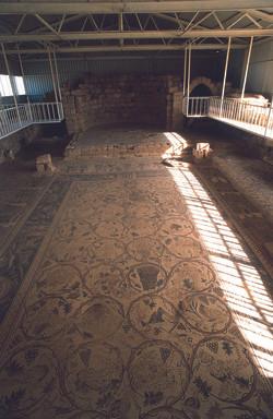Umm Al Rrasas Mosaics
