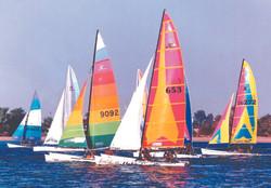 Water sport in Aqaba 1
