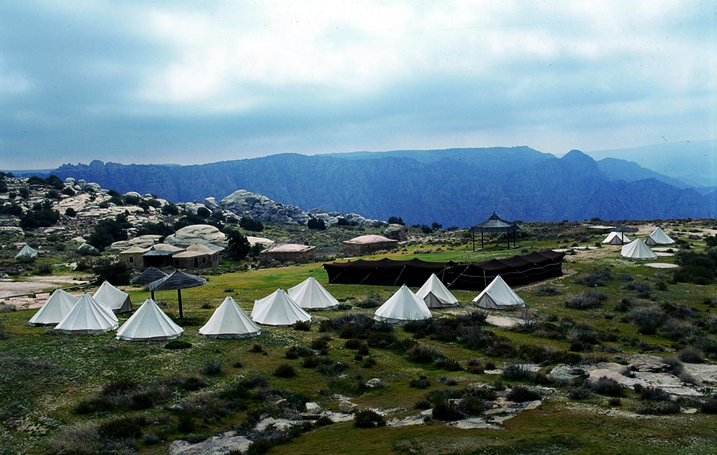 Dana Camps