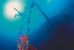 Underwater of Aqaba 6