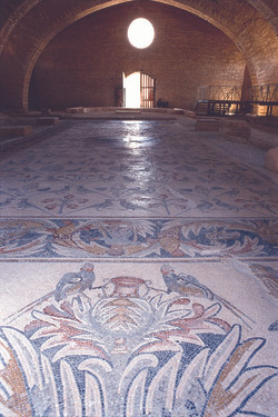 Madaba Apostle church Floor