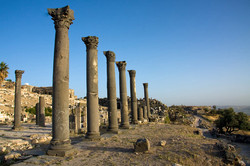 Colonnaded Road