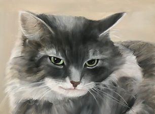 Oil painting of a black and white cat