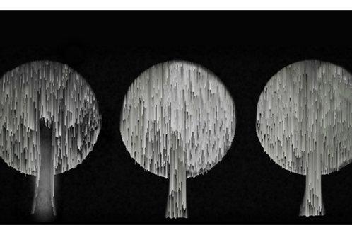 Framed Digital Design