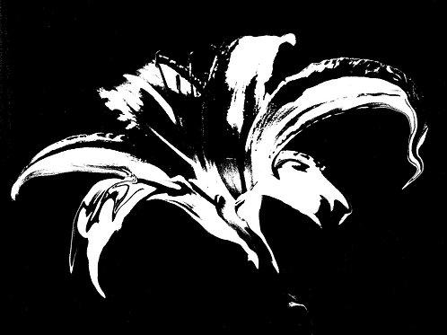 """Fleur #1"""