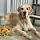 Thumbnail: Pet Dog Cake Topper