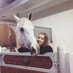Abu Dhai Horse Back Riding
