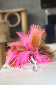 Feathered cat toy