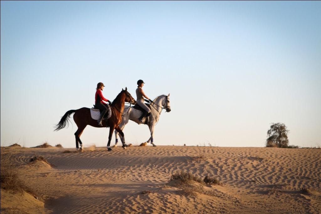 Hacking in Arabian Desert