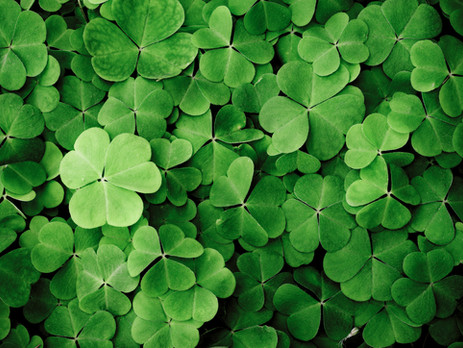 Celebrating St. Patrick's Day!