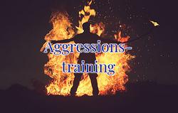Aggressionsaufbautraining