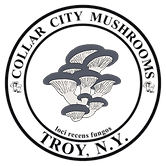 Collar City Mushroom Logo transparent Dark (1) (1).png