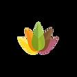 Transparent Logo Clear.png