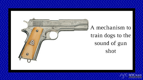 A mechanism to train dogs to the sound of gun shot