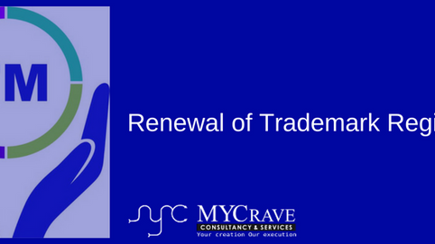 Reasons for Trademark Objection