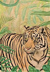 Sumatra tiger.jpg