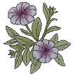 Petunia_lilla.png