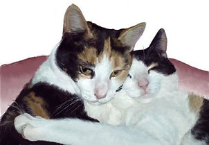 Palle_og_Nala_katte.jpg