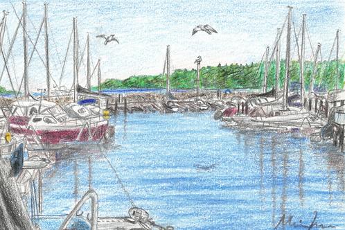 Marselisborg lystbådehavn kort