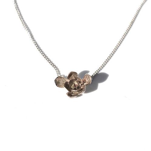 Small Aeonium Pendant