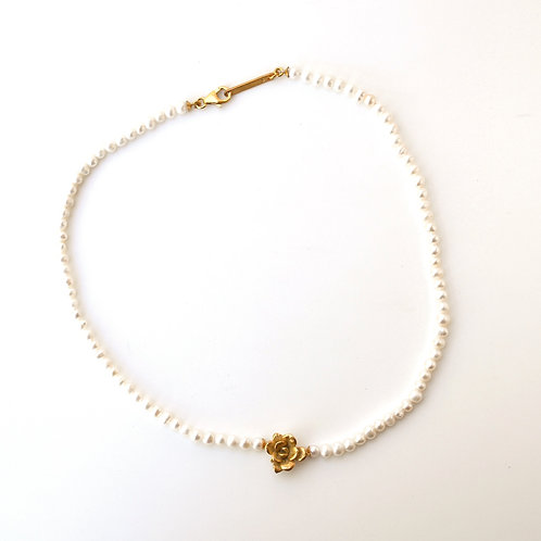 Golden Succulent on Pearls