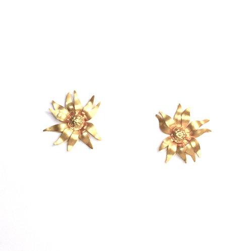 Golden Flannel Flower Studs