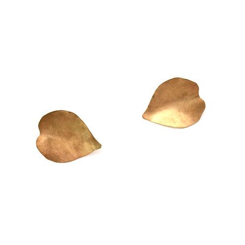 Heart Leaf Mallee studs
