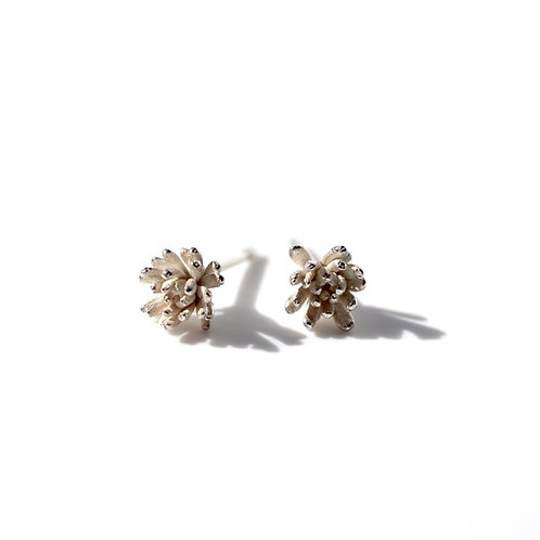 Tiny Urchin Studs