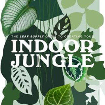 Indoor Jungle by Lauren Camilleri HardCover