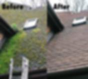 roof moss ba.png