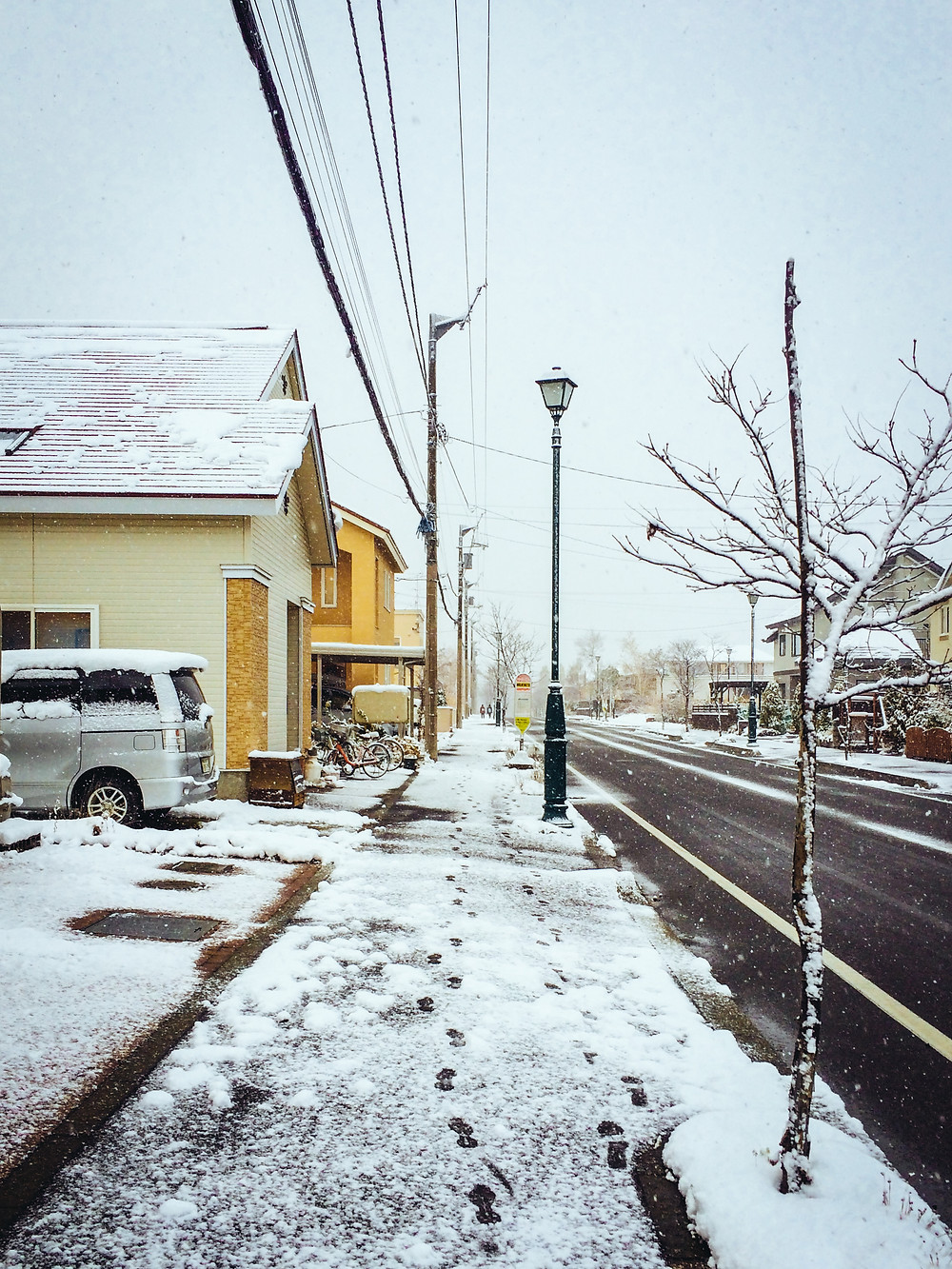 5 winter.jpg