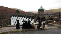 Day out Elan Valley 2015