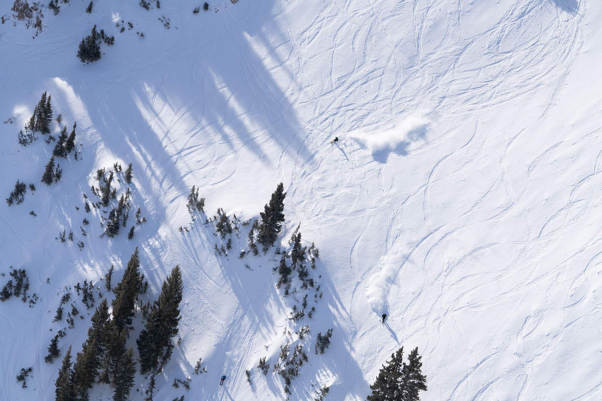 'Carve', Alta, Utah 2021