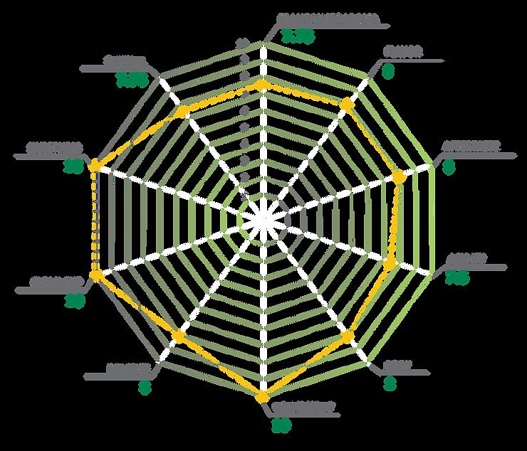 spider chart-v2-01.png