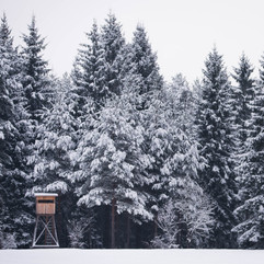 PIX by Kathrin Gindl Winter is here_.jpg