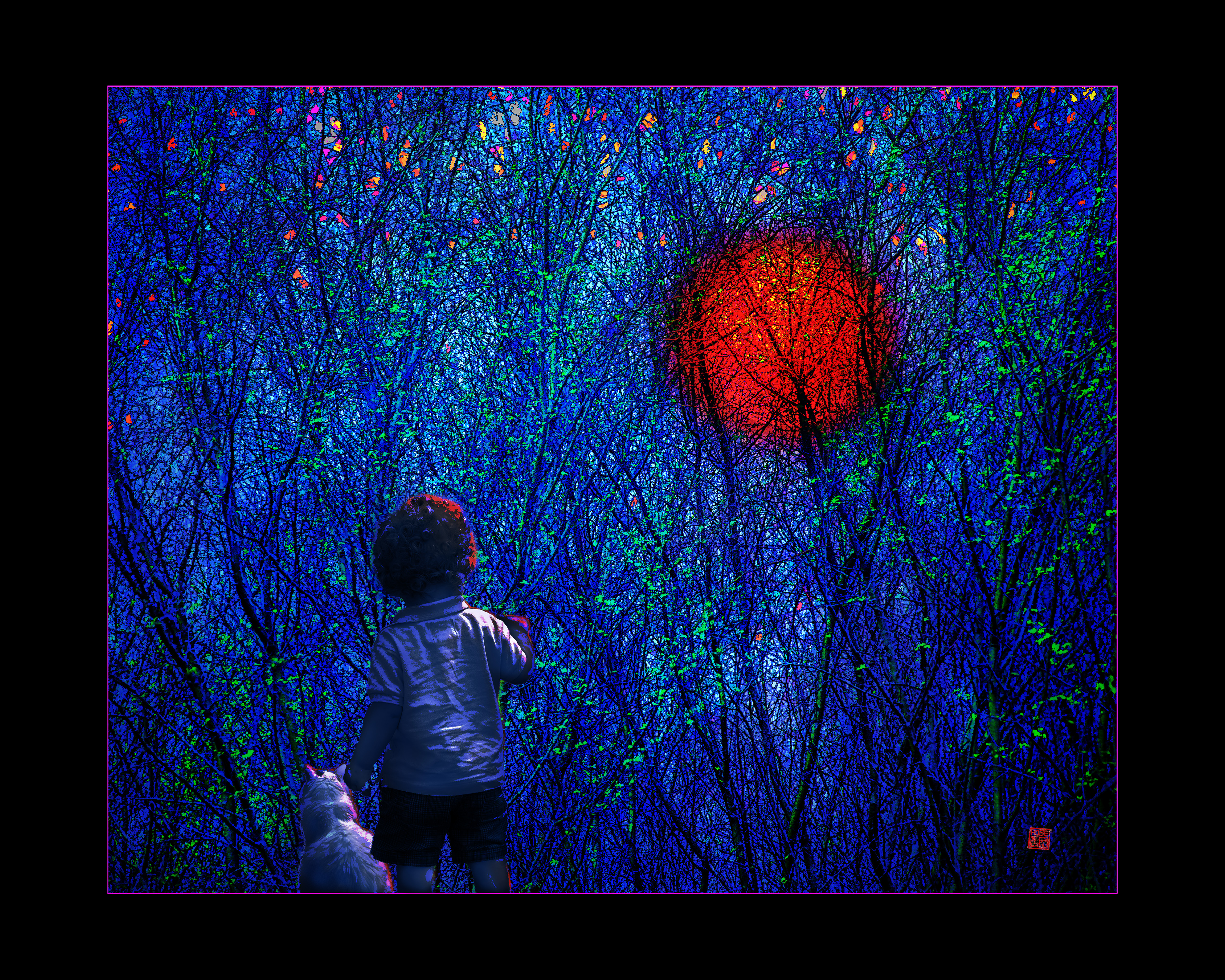 Moonrise a Boy and Cat