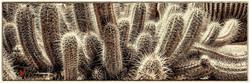 Texas Spiny Lizard Amid Cacti