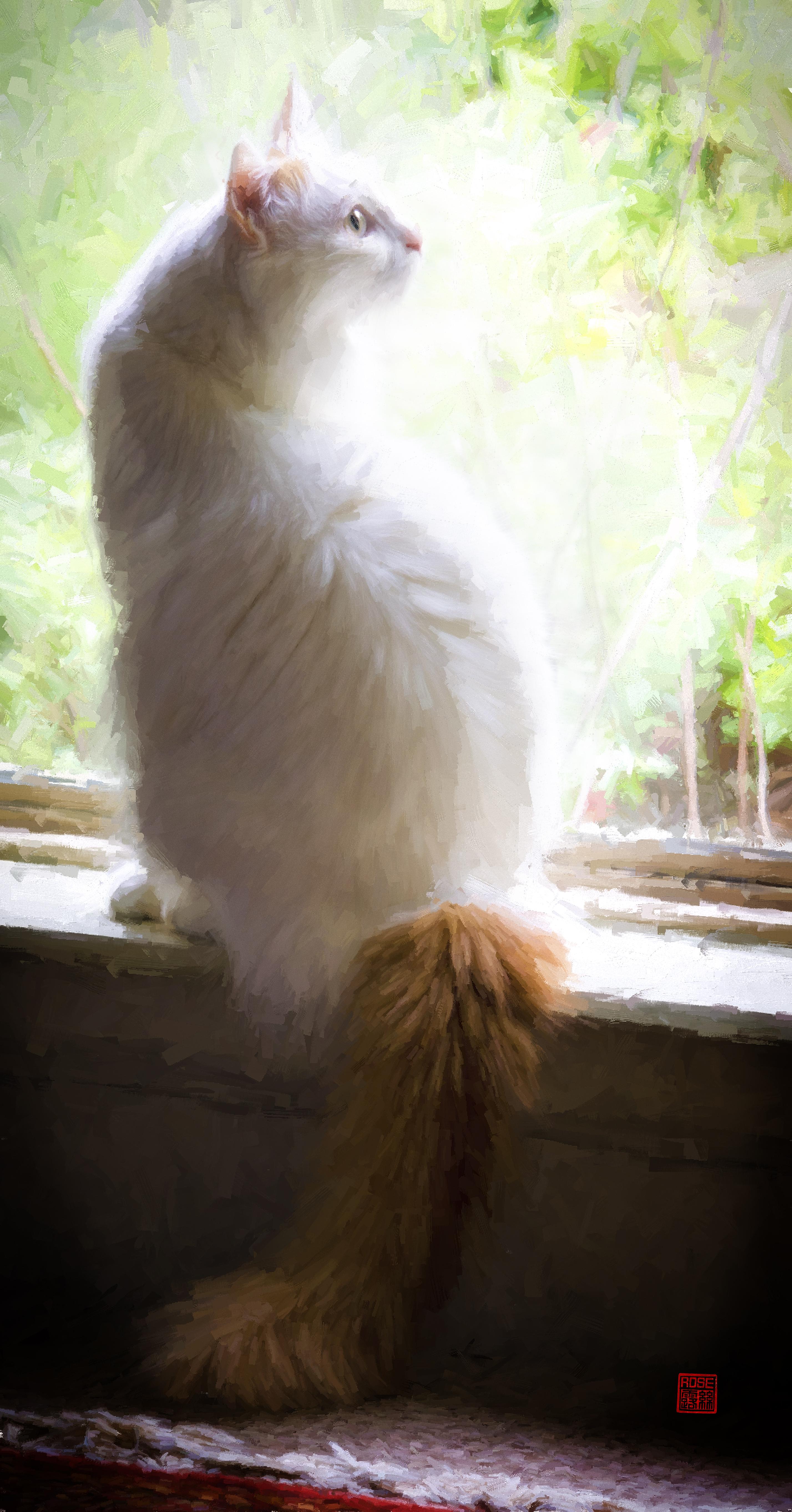 Dincer at Window