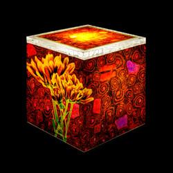 Big Flowers light box