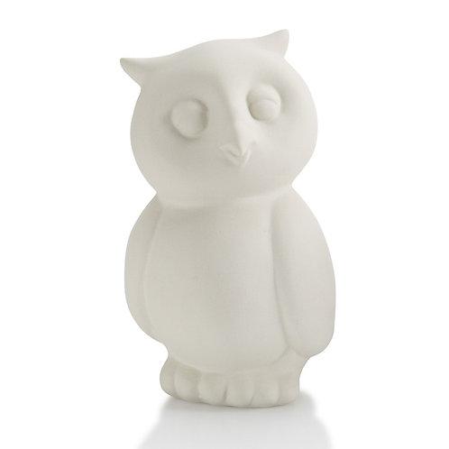 Owl Party Animal